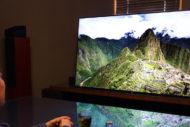 大相撲の無観客試合をソニー有機ELテレビで観る醍醐味!