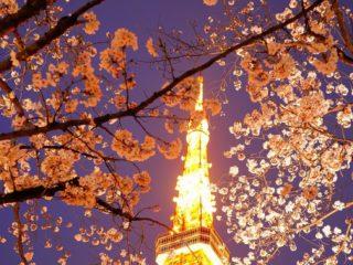 東京タワーへ夜景撮影会に行ってきました。